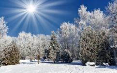Featured Image - Winter Landscape